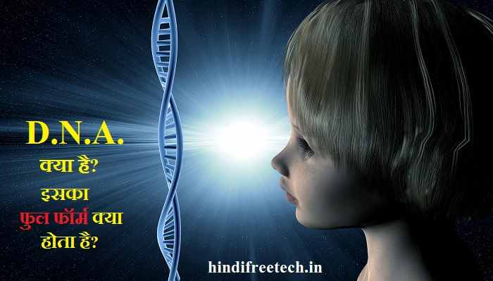 what is the full form of dna